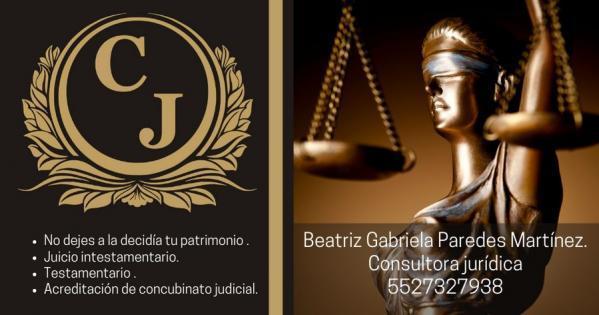 Consultora Jurídica