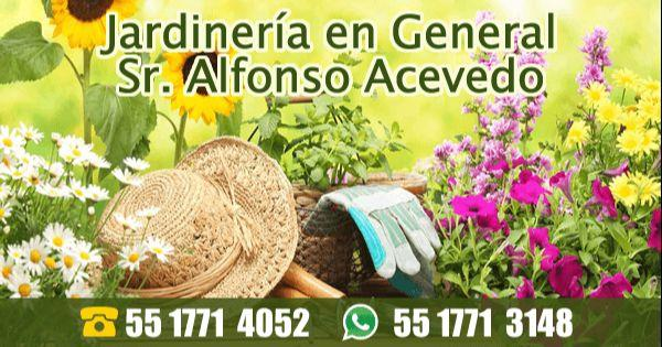 Jardinería en General Sr. Alfonso Acevedo