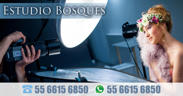 Estudio Bosques