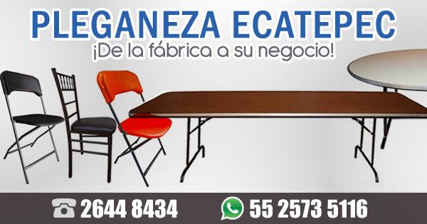 PLEGANEZA Ecatepec
